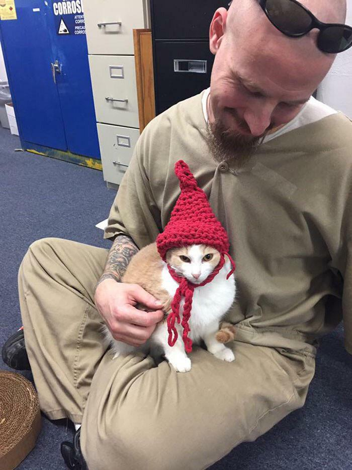 Los prisioneros de Indiana recibieron gatos para cuidar como parte de un plan de rehabilitación. ¡Aquí está un preso con un gorro que tejió para su gato!