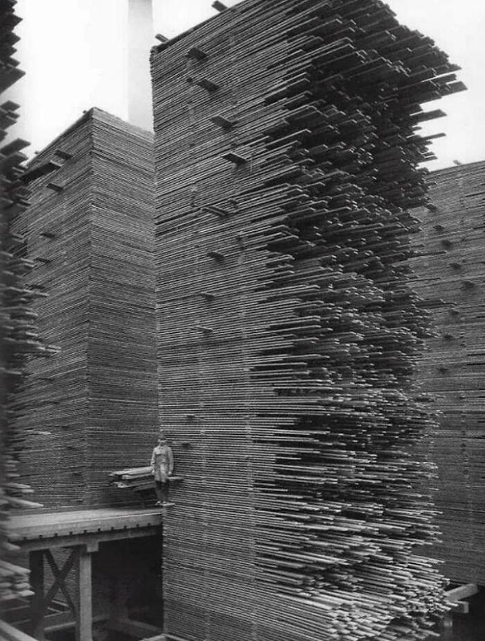 Una montaña de madera. Todo apilado y desapilado a mano
