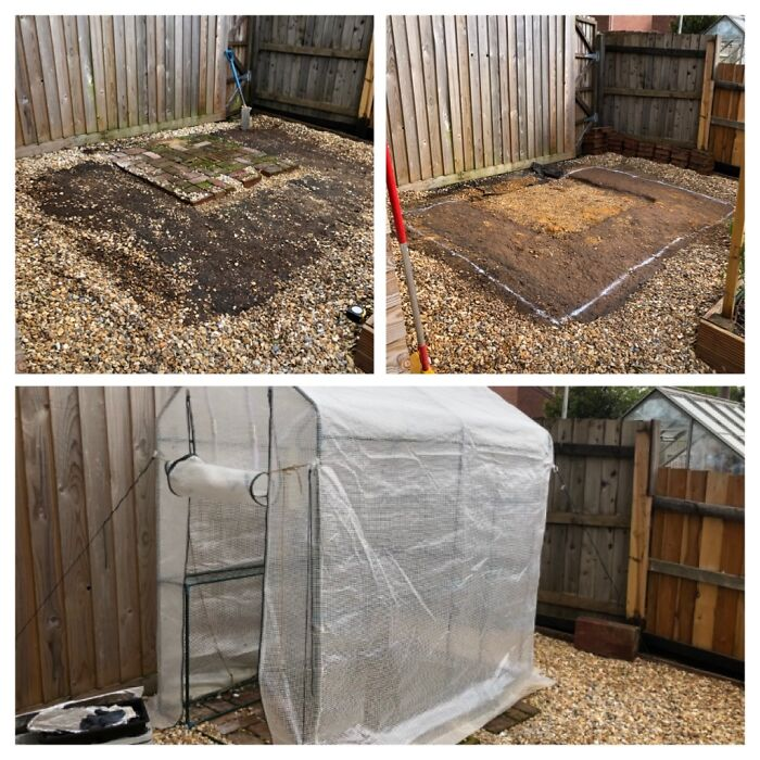 Not The Full Thing, But We Got A New Glass Greenhouse, And So We Are In The Process Of Removing The Plastic Ome
