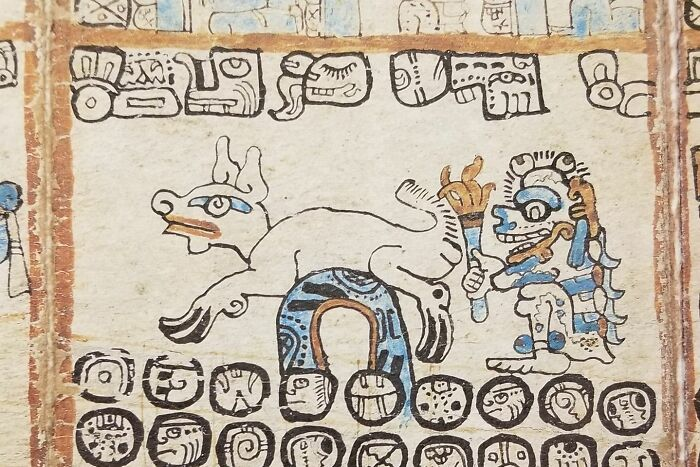 Mayan Exhibit Had This Image In A Codex Of A Guy Setting A Goat's Ass On Fire And Laughing About It
