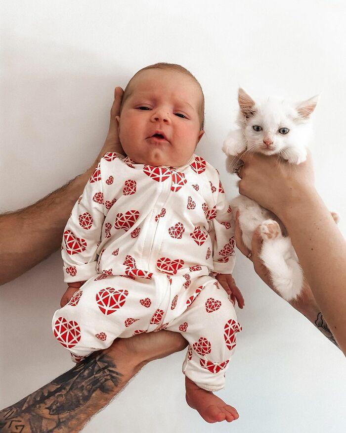 Esta mujer embarazada encontró una gata también preñada y la acogió, y al final dieron a luz al mismo tiempo