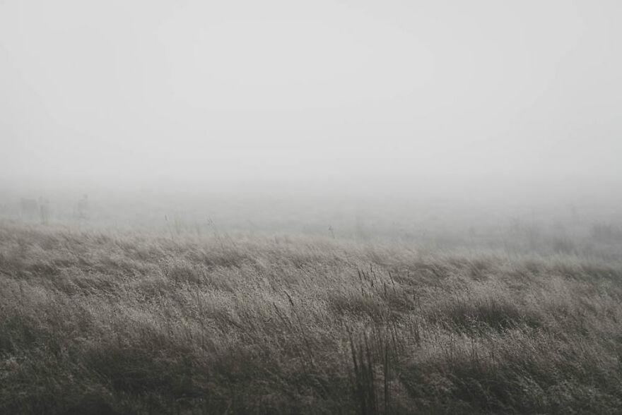 Winter In Woodend By Melissa Stewart