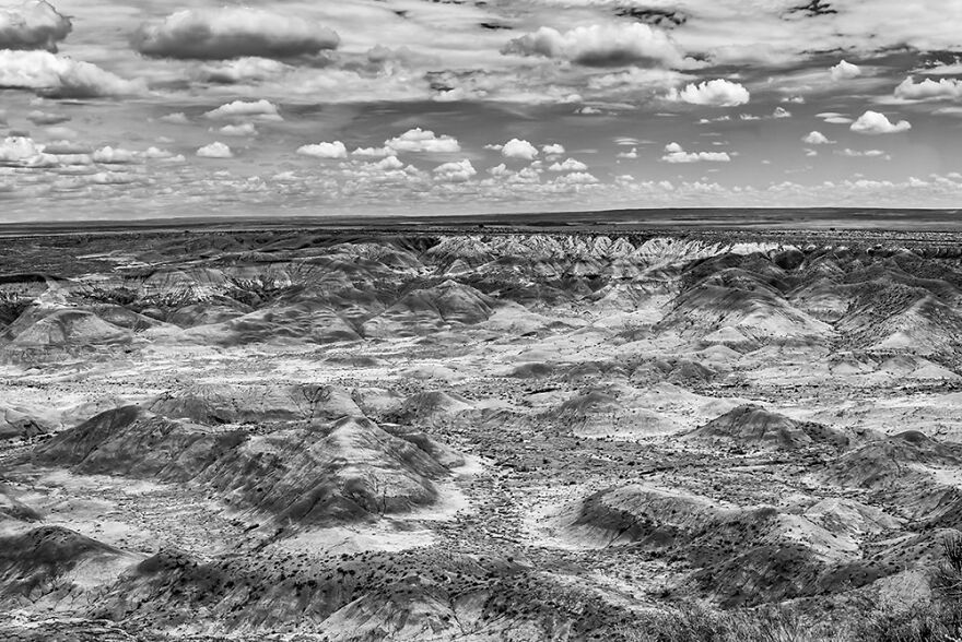 Painted Desert By Barry Guthertz