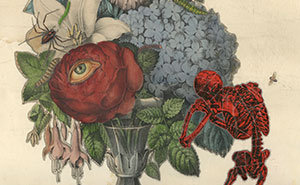 Dan Barry's 26 Unique Collage Works That Include Botanics And Themes Of Mortality