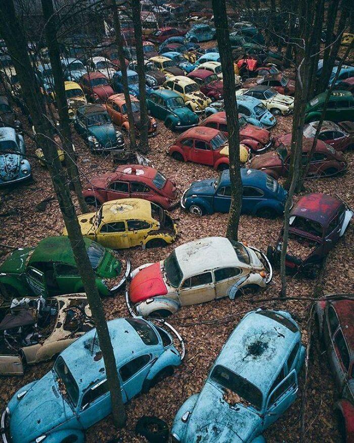 Volkswagen Graveyard