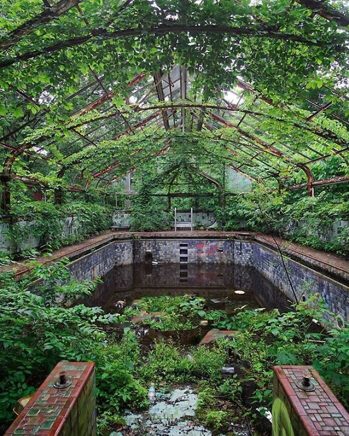 An Overgrown Pool At An Abandoned Mansion. Location Unknown