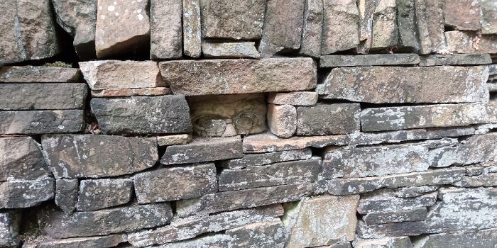 In A Dry-Stone Wall, Derbyshire UK