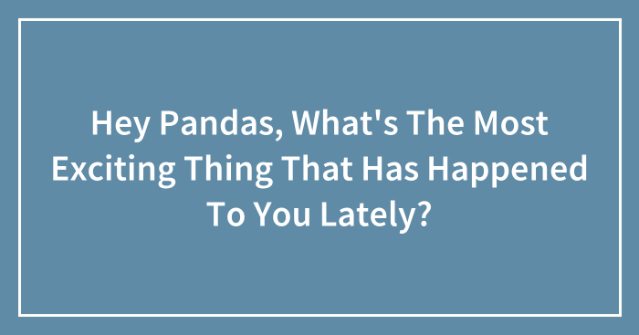 Hey Pandas, What's The Most Exciting Thing That Has Happened To You Lately? (Closed)