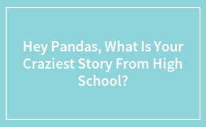 Hey Pandas, What Is Your Craziest Story From High School?