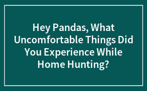 Hey Pandas, What Uncomfortable Things Did You Experience While Home Hunting?