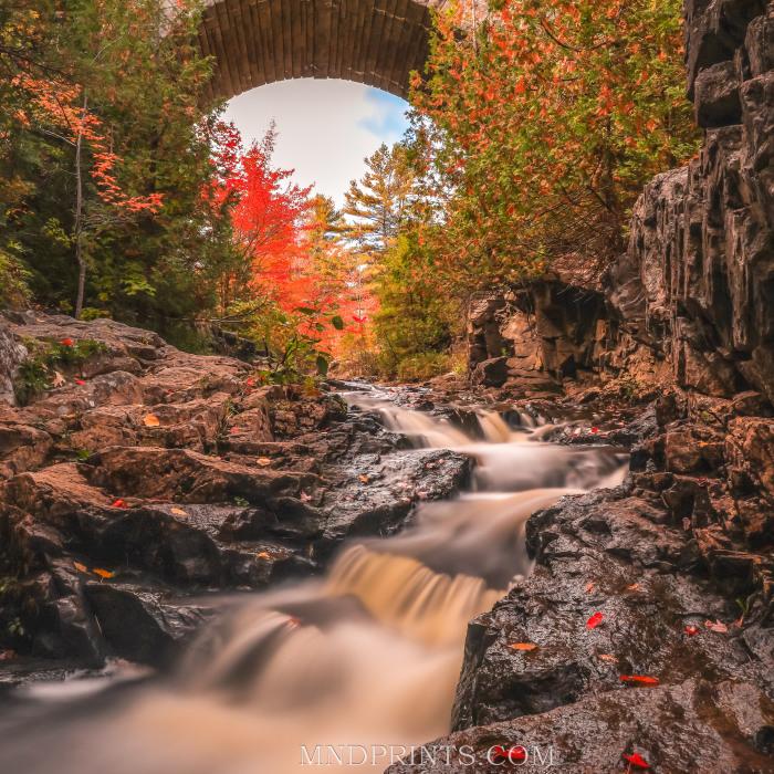 I'm Ready For Fall Photography (4 Pics)