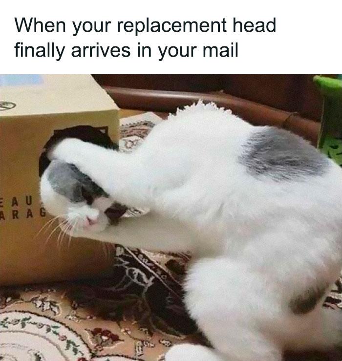 Getting Head Is Best