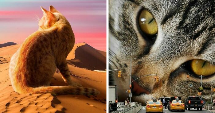 This Artist Creates Surreal Photo Edits With Giant Cats In Them (91 New Pics)
