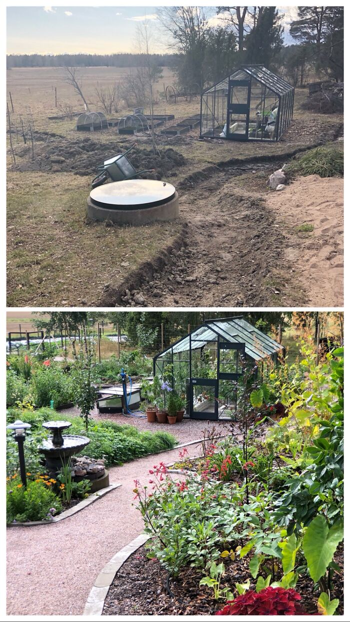 Progress With My Garden 2020-2021. Extremely Proud Of It!