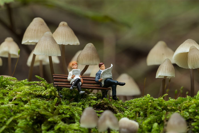 I Created Miniature Worlds And Here Are 21 Pictures (New Pics)