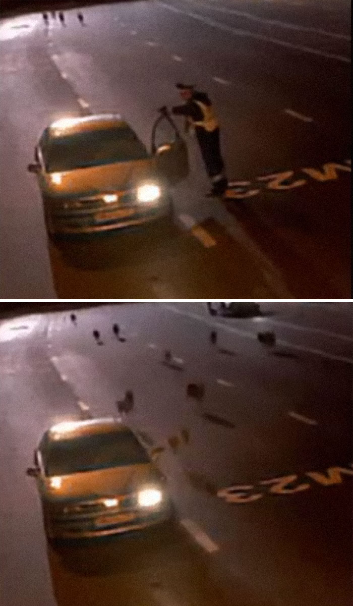 Russian Cop Gets Interrupted By A Pack Of Wolves During A Traffic Stop