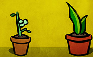 I Make One Panel Comics Starring A Snake And Goose Plants, And Here Are 16 Of My Best Works