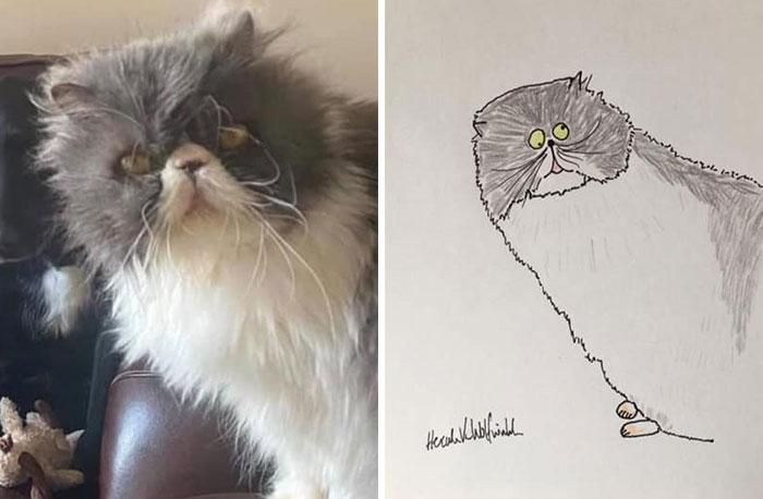 Pet-Portraits-Funny-Hercules