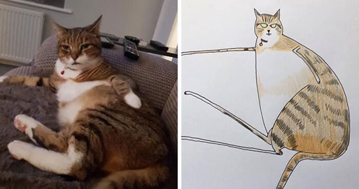 30 Animal Portraits Drawn So Badly, They Look Like Masterpieces