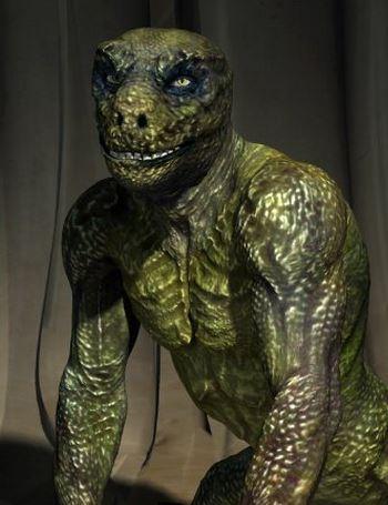 the-reptile-iniside-6142c6b6c0140.jpg