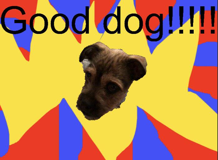 Good Dog!!!!