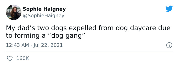 Doggos-Expelled-Daycare