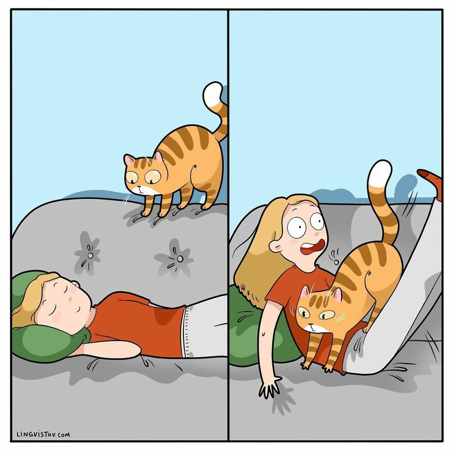 Comics That Those With A Cat Will Understand Perfectly (86 New Pics)