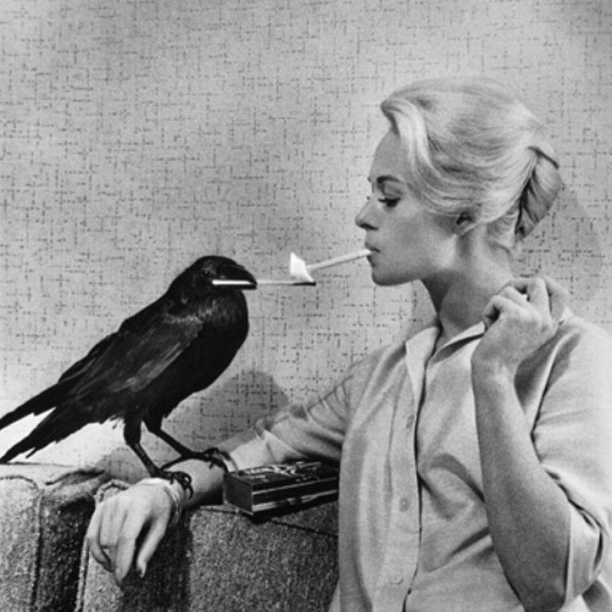 Tipi Hedren (From The Birds)