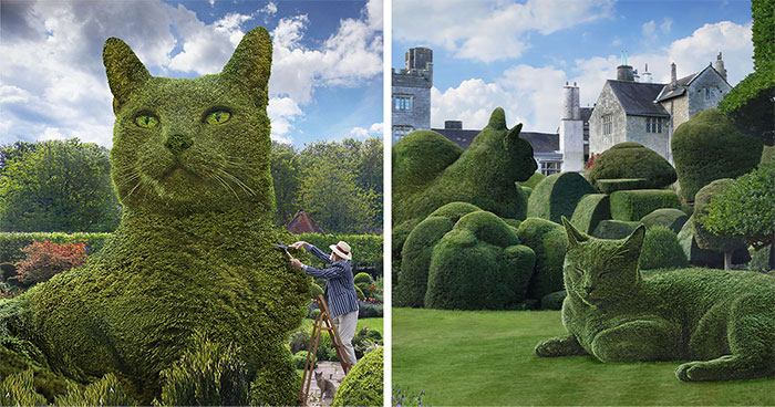 This 75-Year-Old Artist Creates Edits Of Bushes In Honor Of His Deceased Cat