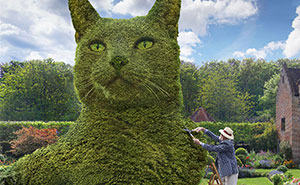 Artist Creates Giant Bushes In The Shape Of His Deceased Cat (70 Pics)