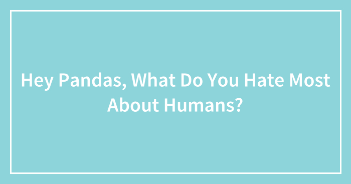 Hey Pandas, What Do You Hate Most About Humans?
