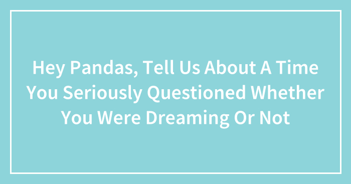 Hey Pandas, Tell Us About A Time You Seriously Questioned Whether You Were Dreaming Or Not