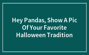 Hey Pandas, Show A Pic Of Your Favorite Halloween Tradition