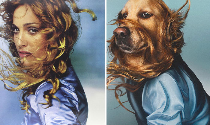This Dog Recreates Madonna's Iconic Pics And Some Could Say They're Even Better Than The Originals (18 Pics)