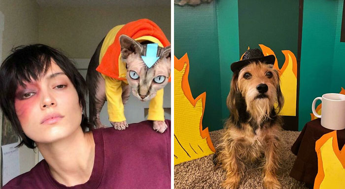 50 Pets That Slayed Their Halloween Costumes