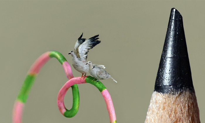 I Carve Tiny Birds Under A Microscope To Make The Outside World Disappear (20 Pics)
