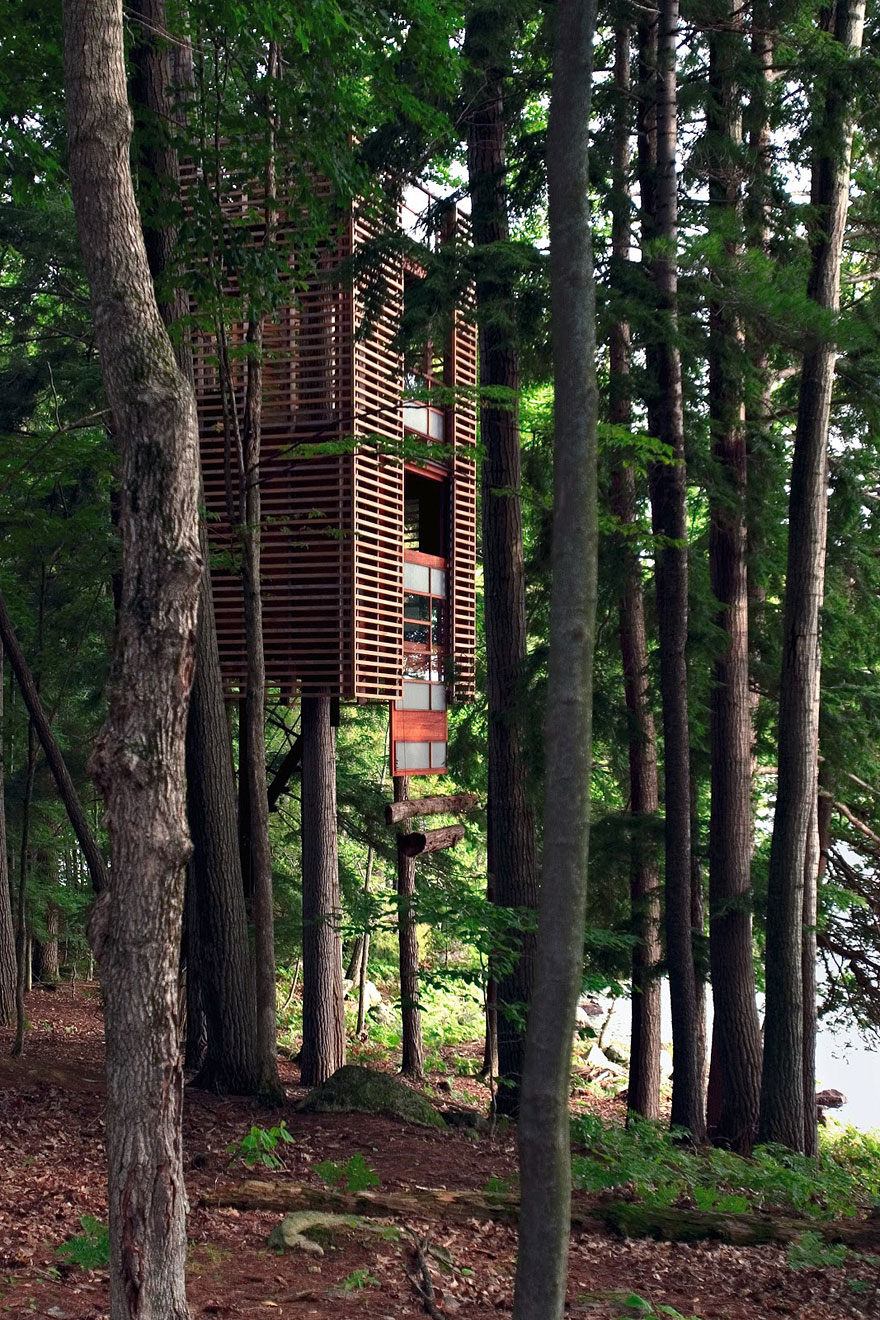 Coolest Tree Houses 17 Of The Most Amazing Treehouses From Around The World  Bored Panda
