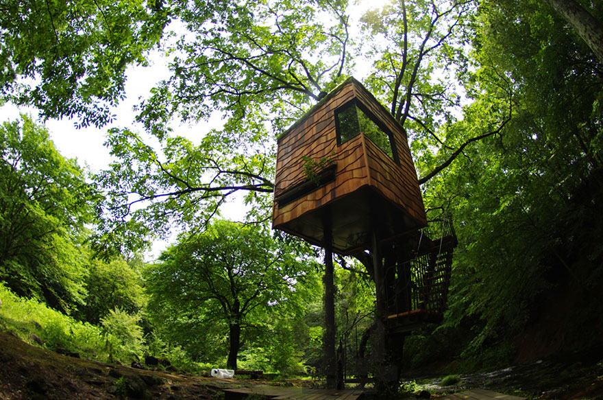Smallest Tree House In The World 17 of the most amazing treehouses from around the world | bored panda