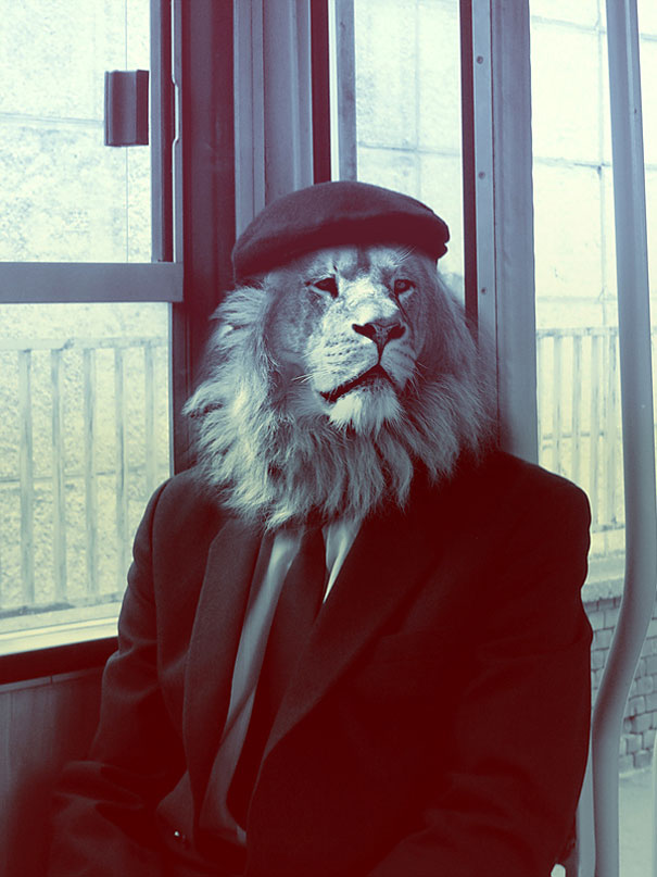 Animals Dressed As People By Cristoph Meyer