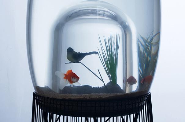 Duplex Aquarium Bird Cage