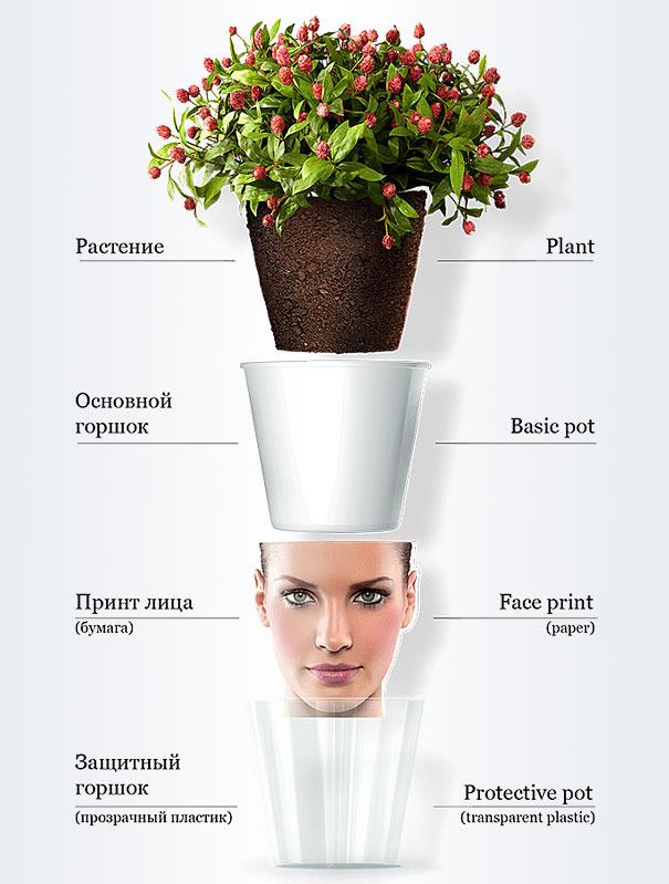 Face Plant Pot Part - 41: Bored Panda