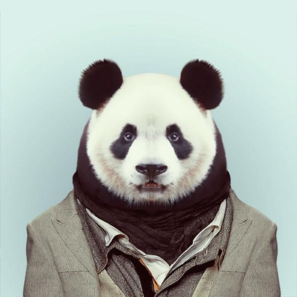funny-zoo-animal-portraits-yago-partal-1