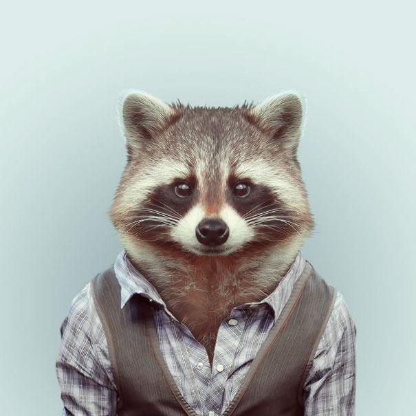 funny-zoo-animal-portraits-yago-partal-2