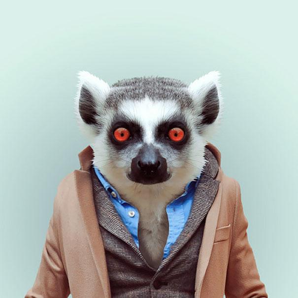 funny-zoo-animal-portraits-yago-partal-3