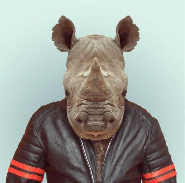 funny-zoo-animal-portraits-yago-partal-7