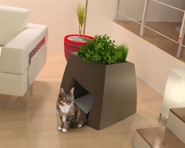 21 furniture ideas for pet lovers and their furry friends - Sofas para gatos ...