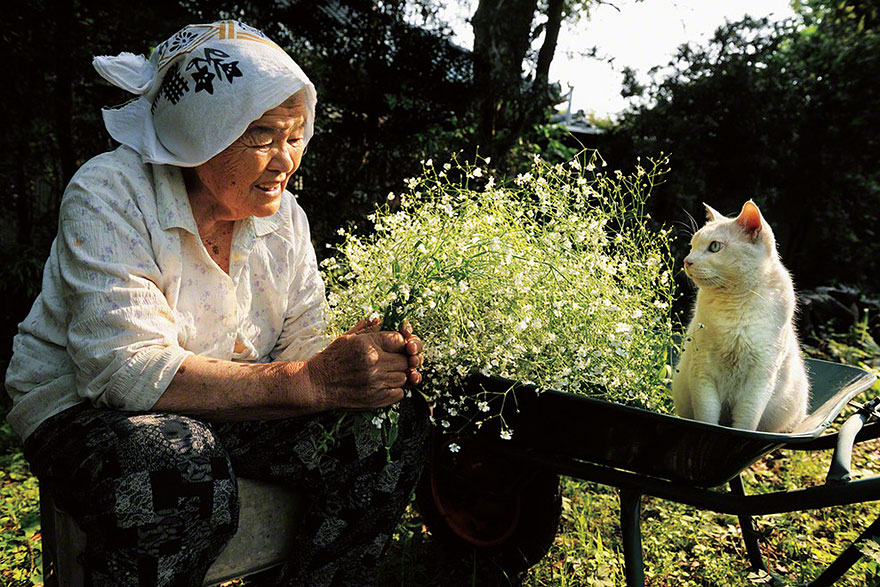 Beautiful Friendship Between a Grandmother and Her Odd-eyed Cat