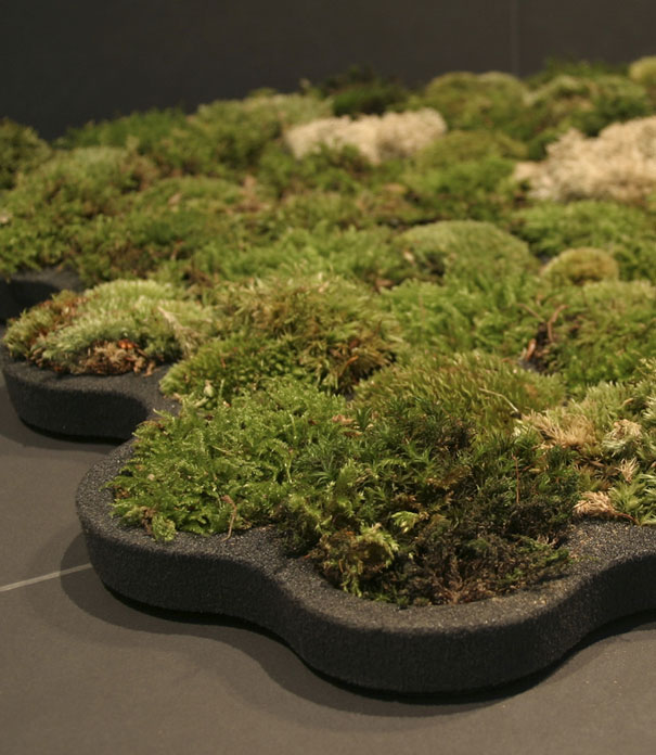 26 Green Design Ideas Inspired By Nature