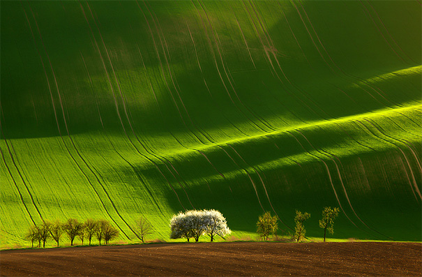50 Mind-Blowing Examples of Landscape Photography | Bored Panda