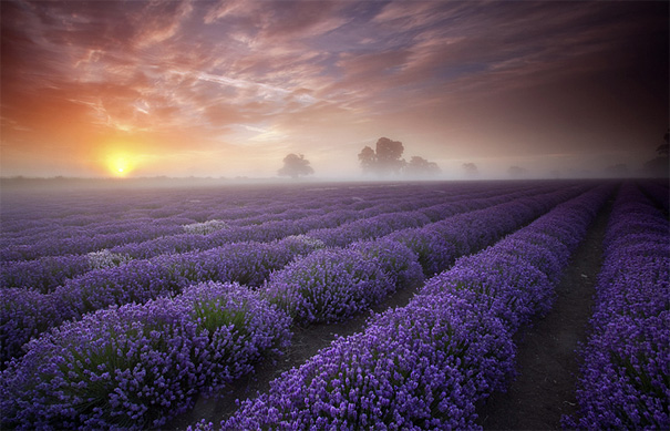 50 Mind-Blowing Examples of Landscape Photography
